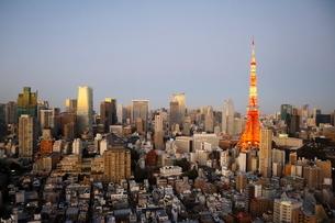 夕暮れどきの東京タワーと港区の高層ビル群の写真素材 [FYI03459718]