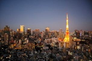 東京タワーと港区の高層ビル群の夜景の写真素材 [FYI03459735]