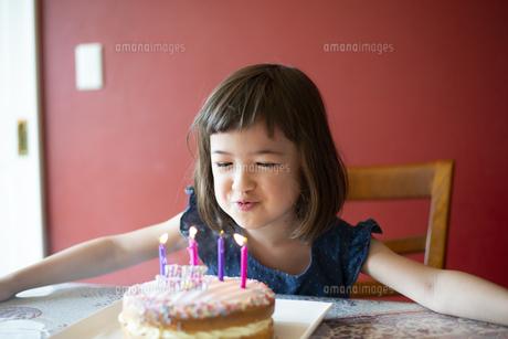 ケーキの上のろうそくを吹き消している女の子の写真素材 [FYI03459794]