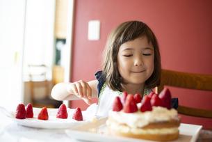 ケーキの上にいちごを乗せている女の子の写真素材 [FYI03459799]