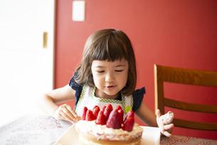 いちごのケーキを見ている女の子の写真素材 [FYI03460405]