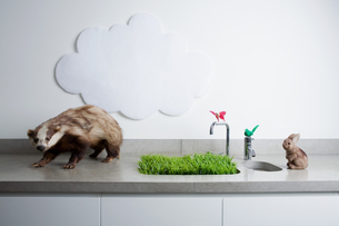 Fake animals a cloud and grassの写真素材 [FYI03461032]