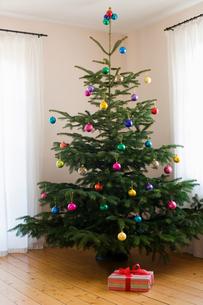 A Xmas present under a christmas treeの写真素材 [FYI03461462]