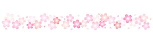 桜のライン素材のイラスト素材 [FYI03462314]