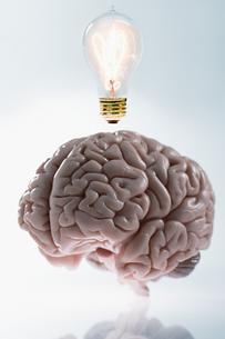 A brain having an ideaの写真素材 [FYI03463084]