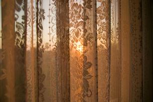 Sunlight through net curtainの写真素材 [FYI03463603]