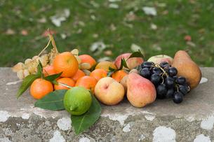 Fruitの写真素材 [FYI03464179]