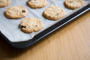 Homemade cookiesの写真素材 [FYI03465059]