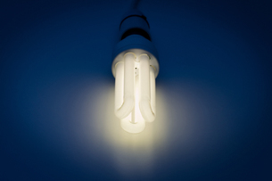 Energy saving lightbulbの写真素材 [FYI03465451]