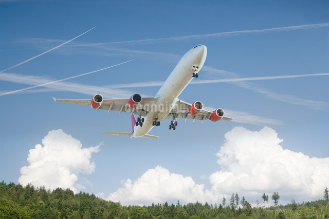 Airplane above a forestの写真素材 [FYI03465689]