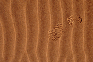 Footprint in the sandの写真素材 [FYI03465718]