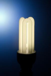 Energy saving lightbulbの写真素材 [FYI03465741]