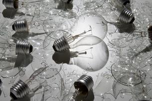 Lightbulb surrounded by broken bulbsの写真素材 [FYI03466379]