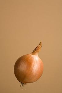 Onionの写真素材 [FYI03466488]