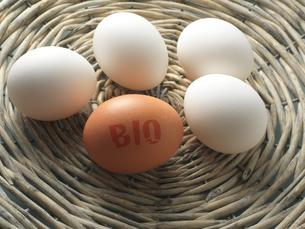 Bio eggの写真素材 [FYI03466659]