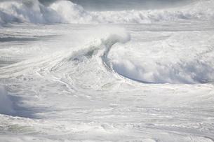 Ocean wavesの写真素材 [FYI03469252]