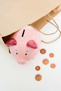 Piggy bank and coinsの写真素材 [FYI03469344]