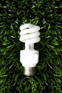 An energy saving lightbulbの写真素材 [FYI03469961]