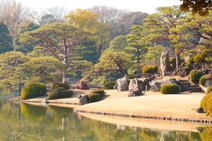 東京都 豊島区 六義園の紅葉風景の写真素材 [FYI03470172]