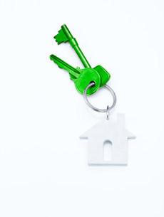 Green house keysの写真素材 [FYI03470176]