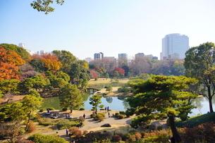 東京都 豊島区 六義園の紅葉風景の写真素材 [FYI03470208]