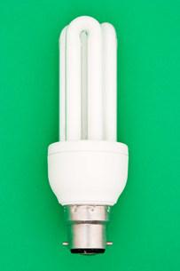 Energy saving lightbulbの写真素材 [FYI03470288]