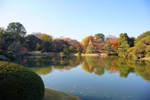 東京都 豊島区 六義園の紅葉風景の写真素材 [FYI03470310]