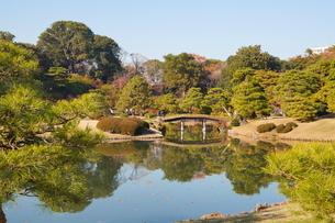 東京都 豊島区 六義園の紅葉風景の写真素材 [FYI03470346]