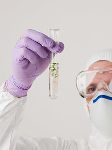 Scientist holding a plant in a test tubeの写真素材 [FYI03471492]