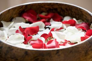 Petals in a bowlの写真素材 [FYI03471976]
