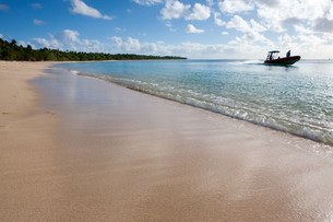 Waves Lap onto Shore,Tonga.の写真素材 [FYI03472956]