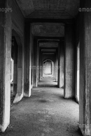 並んだコンクリートの柱の写真素材 [FYI03473043]