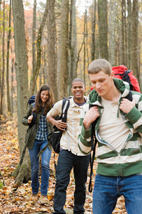 Young people hiking through forestの写真素材 [FYI03473060]