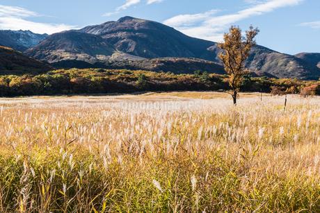 秋の飯田高原風景の写真素材 [FYI03473197]