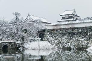 雪の福岡城址の写真素材 [FYI03473249]