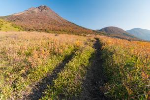 由布岳登山道の写真素材 [FYI03473376]