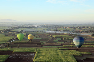 Hot air balloons over fields near luxorの写真素材 [FYI03473865]