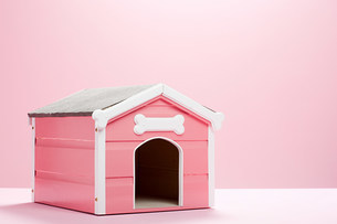 Pink dog kennelの写真素材 [FYI03474093]