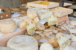 Sheeps cheese on market stallの写真素材 [FYI03475270]