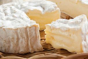 Camembert cheeseの写真素材 [FYI03475296]