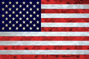 Stars and stripes flagの写真素材 [FYI03475557]
