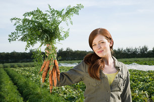 Young woman holding bunch of carrots in fieldの写真素材 [FYI03476936]
