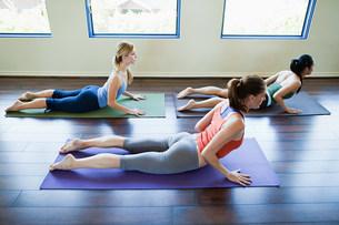 Three woman doing cobra pose in yoga classの写真素材 [FYI03477760]