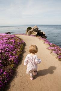 Toddler walking along path next to pink flowersの写真素材 [FYI03479831]