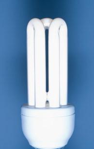 Energy saving lightbulbの写真素材 [FYI03479840]