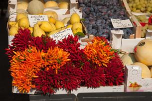 Chilli peppers for sale in rialto market, venice, italyの写真素材 [FYI03481024]