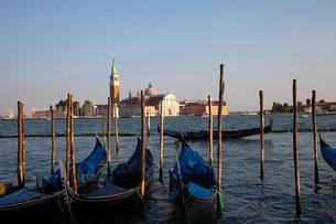 Gondolas and giudecca san giorgio maggiore, venice, italyの写真素材 [FYI03481027]