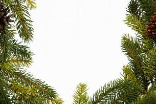 Christmas wreath, studio shotの写真素材 [FYI03481413]