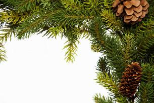 Christmas wreath, studio shotの写真素材 [FYI03481415]