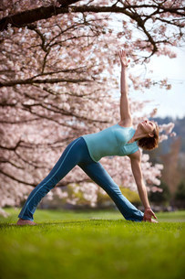Woman in triangle yoga position by cherry treeの写真素材 [FYI03482336]
